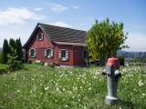 «Landscape_in_Switzerland»