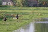 Anglers ribiča_MG_2758111.jpg