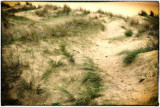 Dunes_FB.jpg