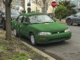 The St. Patrick's Day car