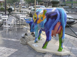The café  cow