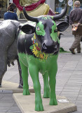 The spring cow