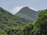 Mountainous region, Ishigaki Island