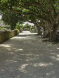 Sand road, Taketomi Island