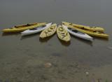 Kayaks, Iriomote Island