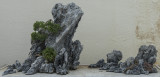 Miniature world in stone (1)