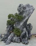 Miniature world in stone (2)