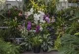 Greenhouse display