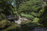 Bridge and lilies in the Japanese garden