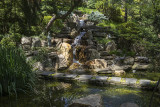 Pond and waterfall, Japanese garden