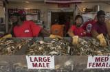 Washington Fish Market, again