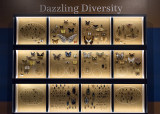 'Objects of Wonder': Dazzling Diversity