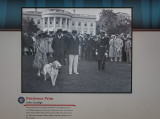 Calvin Coolidge and Prudence Prim