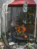 Halloween bunny having a drink