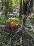 Goblins and the pumpkin cart