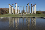 US National Arboretum on a Fall Afternoon