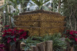 'Roadside Attractions' at the US Botanic Garden