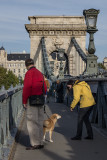 Making friends on Chain Bridge