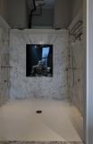 Penthouse, aquarium in the shower