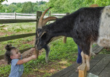 Rescued Residents of Poplar Spring Animal Sanctuary