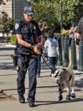 Patrolling in booties