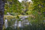 The South Umpqua River at Winston