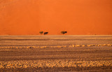 NAMIBIA SCAPES