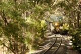 woodland railroad 1