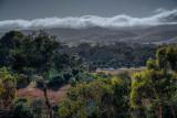 morning cloud 1