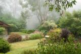 moody misty morn 1