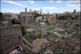 View over Forum Romanum, Rome.Taken from Palatine Hill......
