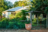 Colac Station homestead, an oasis in the mulga country of western Queensland