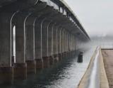 Bridge and the Mist