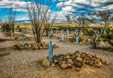 Tombstone AZ