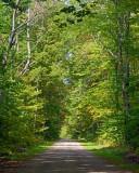 MI-UP-back road