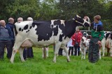 Bute Agricultural Show 2017