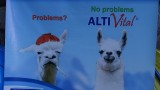 ALTI Vital Advertisement