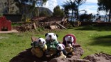 The Pandafords Visit a Chinchero Village in Peru