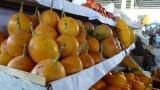 Yummy Fruits!