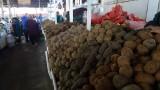 Plenty of Potatoes at the Cusco San Pedro Market