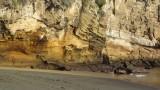 Cliffs at Pitt Point
