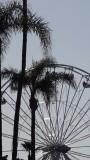 San Diego County Fair Ferris Wheel