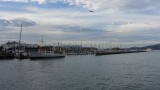 View from Pier 35