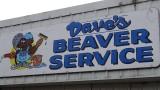 Dave's Beaver Service