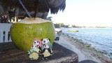 The Pandafords Enjoying a Fresh Coconut at La Buena Vida Restaurant & Bar
