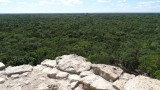 View of the jungle from Nohoch Mul Pyramid