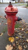 Foster-Powell Fire Hydrant