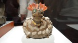 Teotihuacan Chicken