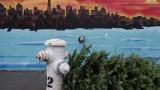 Fire Hydrant, Christmas Tree, SF Street Art