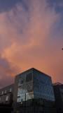 SOMA Sunset